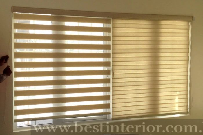 Zebra blinds 1